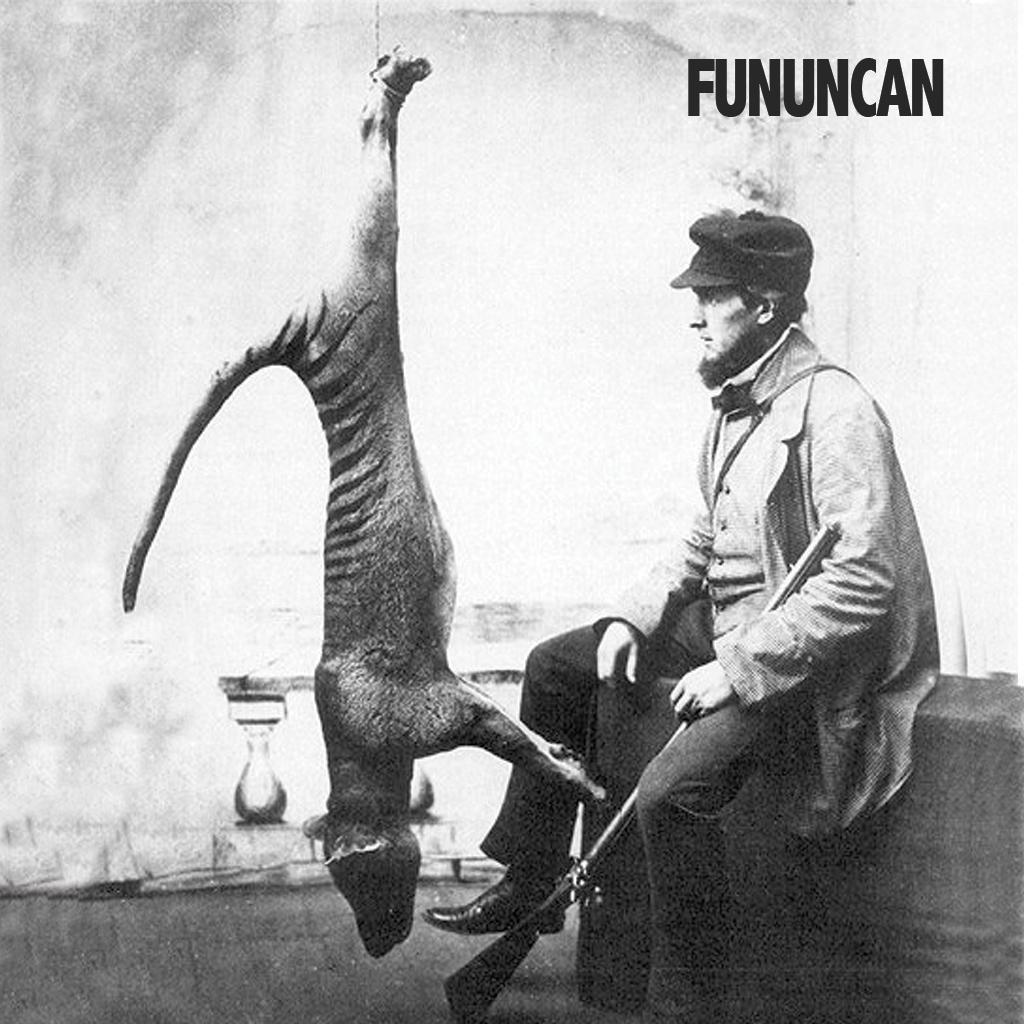 Fununcan-2014